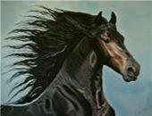 Horse painting 13
