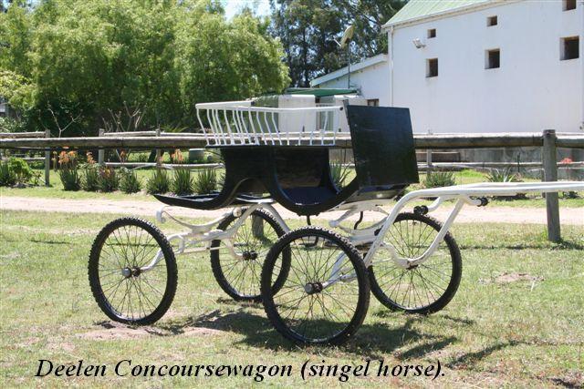 Friesian Horses - Friesch Paarden Centrum - Horses for sale