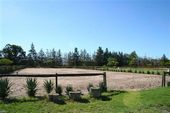Friesch Paarden Centrum - for sale 40